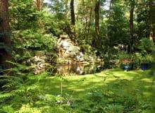 Sadzawka w leśnym ogrodzie. Szmer wody sprzyja leśnym klimatom
