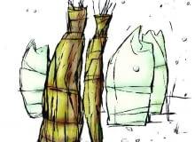 Delikatne krzewy i drzewa otulamy, żeby nie przemarzły