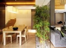 """Zaaranżowanie małego ogródka wewnątrz pomieszczenia uatrakcyjni je i """"oswoi"""""""
