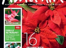Okładka miesięcznika Kwietnik nr 12/2011