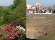 Park przed i po wycince