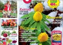 Magazyn Magnolia 2/2015