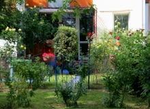 Zieleń za oknami, czyli ogródki przy blokach.