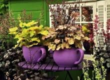 Balkon tylko w żurawkach? Czemu nie. Wielobarwne zestawienia odmian tej byliny wyglądają wspaniale od wiosny aż do mrozów.