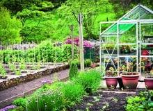 Wiosną i latem zimna szklarnia świetnie nadaje do przygotowywania rozsady warzyw i kwiatów.