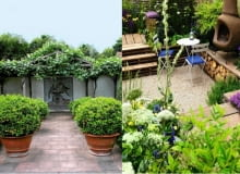 ogrody, balkon, taras, rośliny, nawozy