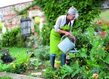 Cukinię i inne warzywa warto zasilać nawozem płynnym z humusem.