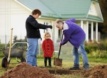 Drzewka owocowe sadzimy na takiej samej głębokości, na jakiej rosły w szkółce lub pojemniku, w którym zostały zakupione.