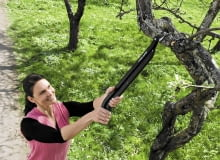 Enemmän ulottuvuutta ja voimaa kuin oksasaksilla, näppärämmin ja tarkemmin kuin raivaussaksilla. Monitoimioksaleikkureilla leikkaat sieltä, minne et tavallisilla oksasaksilla yletä, ja paikoista, joissa raivaussakset vievät liikaa tilaa. Ulottuvuus pidemmälle pensaiden sisään kurottelematta ja naarmuttamatta käsiä. Leikkaamalla kahdella kädellä kevennät työtä huomattavasti. Leikkuuteho 20 . Mitat: pituus 630 mm, paino 480 g. Myyntierä 4. Ean: 6411501966209