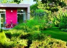 nasiona, trawa, ogrody, rośliny, nawozy