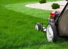 Wertykulacja i aeracja: piękny i zadbany trawnik