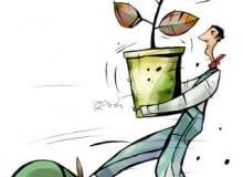 Zielony finał