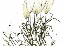 Trawy z wysokimi puszystymi kwiatostanami warto pozostawić na rabatach, nawet jeśli już uschły. W zimowe ranki, pokryte malowniczo szronem, będą ozdobą ogrodu