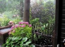 Ogród po deszczu. Stara kuta balustrada i nowy drewniany podest osnute mgiełką z pary wodnej wyglądają bardzo nostalgicznie.