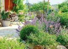 Piękne i niezawodne byliny: bodziszki (Geranium), kocimiętki (Nepeta) i firletki (Lychnis) kolorowym kręgiem otaczają słoneczny taras.