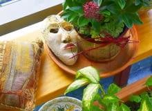 Na wiosnę w oranżerii zakwita skimia. Obok - maska wenecka - pamiątka z podróży do Włoch.