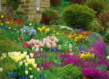 Wiosenna odsłona