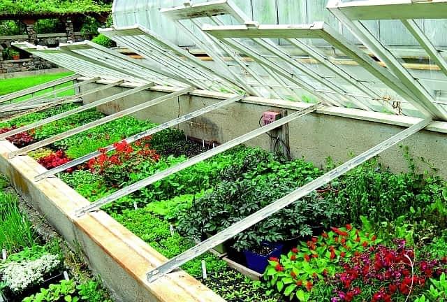 Zalety i wady przydomowych ogrodów