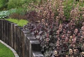 Encyklopedia roślin: Oprocz kwiatow koloru rabatom dodaja gatunki o kol