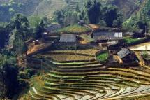 Оризови тераси с вода във Виетнам