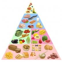 Хранителна пирамида в различни нива и цветове