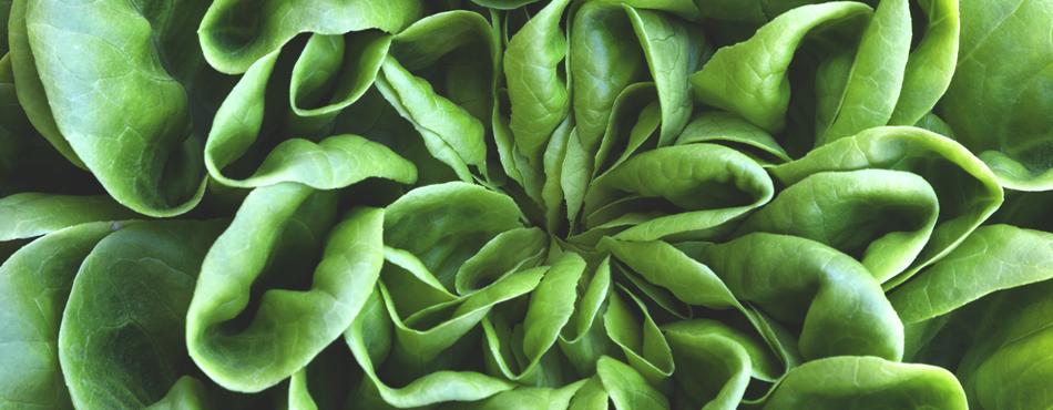 Trendy healthy foods in 2015