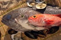Червени и сиви риби една върху друга  върху дървена плоскост