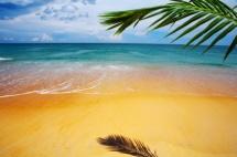 Плаж, синьо море ,златен пяскък и  зелени палми