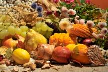 Сушени зеленчуци и плодове  на кафява повърхност