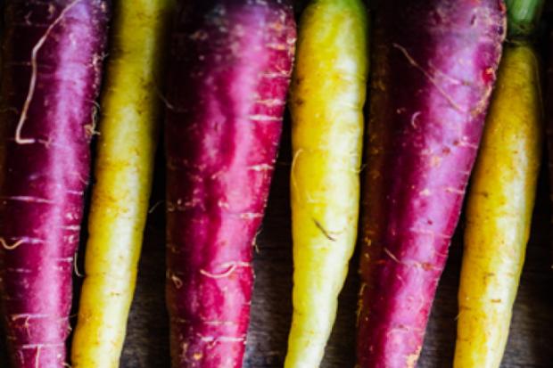 Ljubičasta mrkva - nije samo još jedna boja
