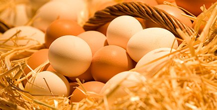 Find out how many calories are there in eggs. Calories chart will help you to find out amount of proteins, fats and carbohydrates are in eggs.