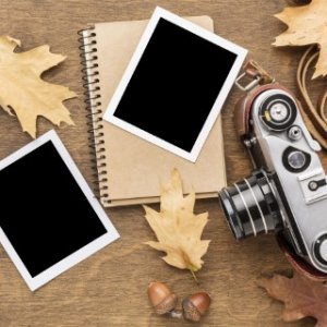 top-view-camera-with-photos-autumn-leaves (Phone).jpg