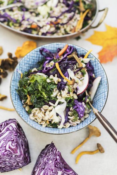 Kolmen kaalin wok sienillä ja ohralla