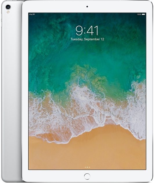 Offerta Apple iPad Pro 12.9 256gb cellular 2a gen su TrovaUsati.it
