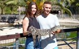 Take the baby crocodile in your hand + Photo