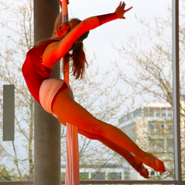 Aerial workshop for adults - January 12th & 13th 2019
