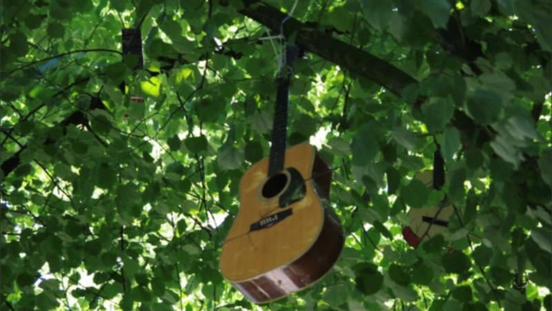 Junges Haus: Zwischen Gitarren und Bäumen - best of