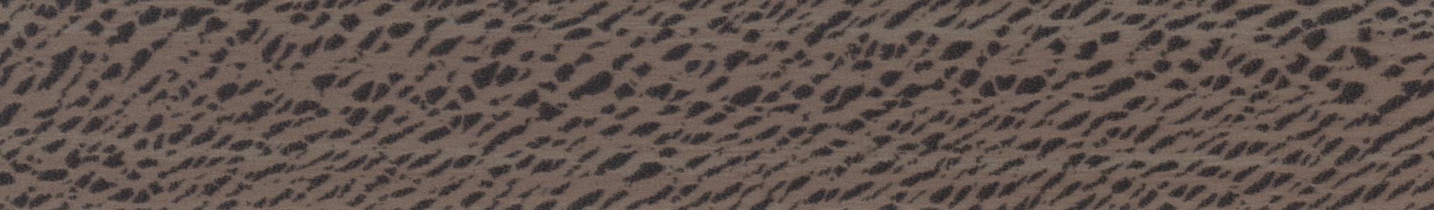 HD 264838 ABS Edge Platan Smooth