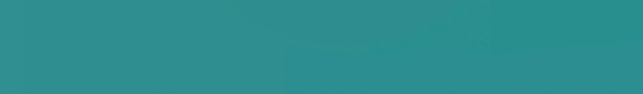 HU 16245 кромка ABS зеленая гладкая 100 глянец 10°