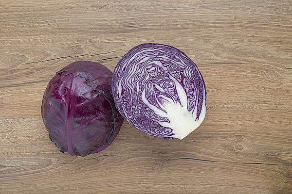 Crauto viola