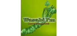 Radio Wasabi FM - Zwevegem | Live en online naar de stream luisteren