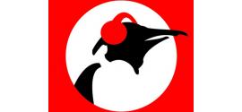 Pinguin Radio | Live en online naar de stream luisteren