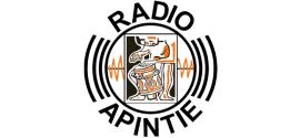 Radio Apintie | Live en online naar de stream luisteren