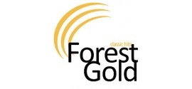 Radio Forest Gold | Listen online to the live stream