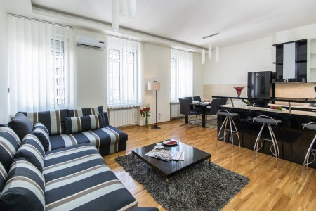 Three-bedroom Apartment Rakoc A22 Belgrade Center