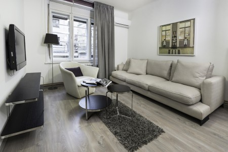 Three-bedroom Rakoc Apartment A26 Belgrade Center