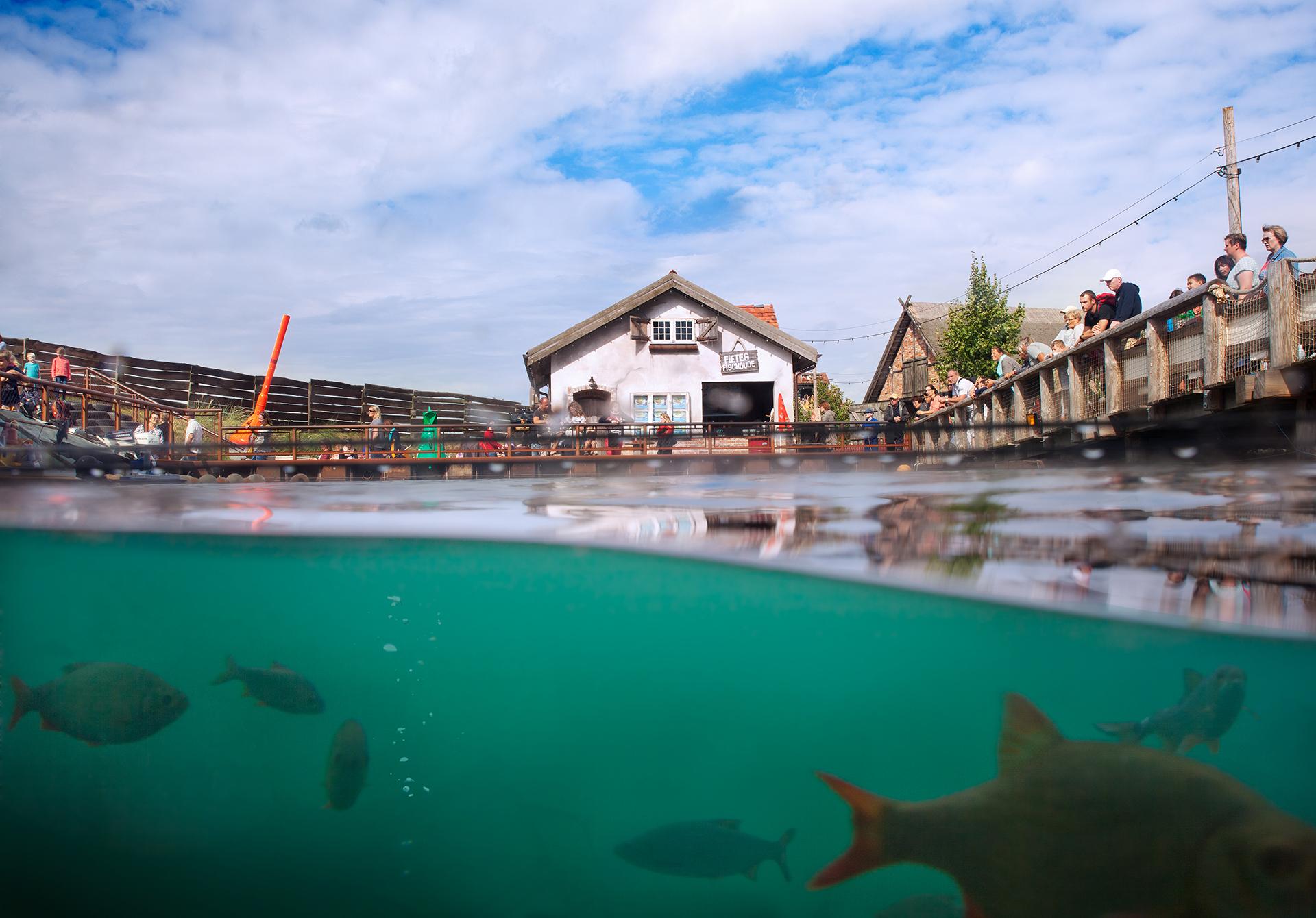 Erlebnis-Aquarium Rövershagen