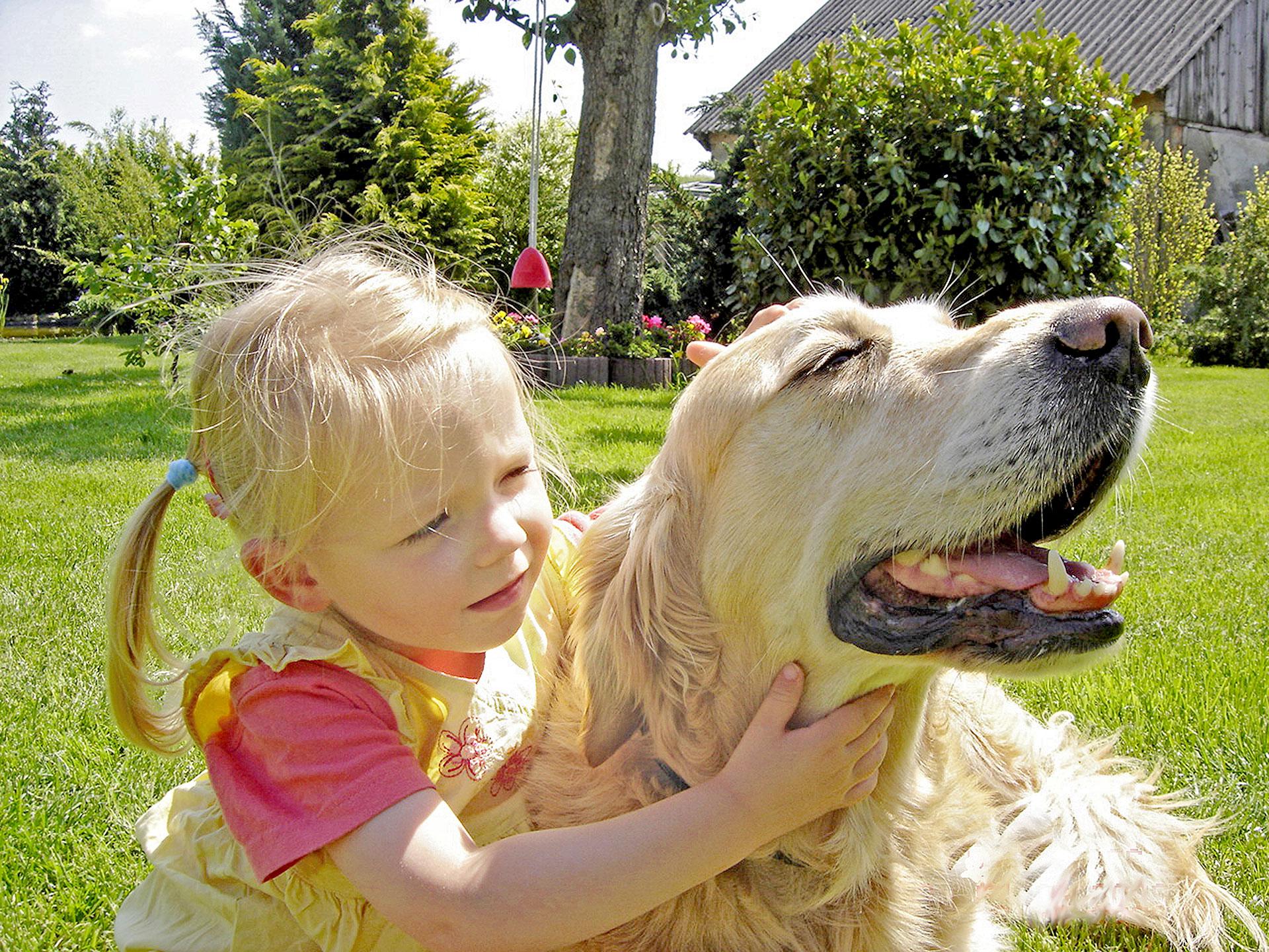 Karls hilft Hund mit Kind