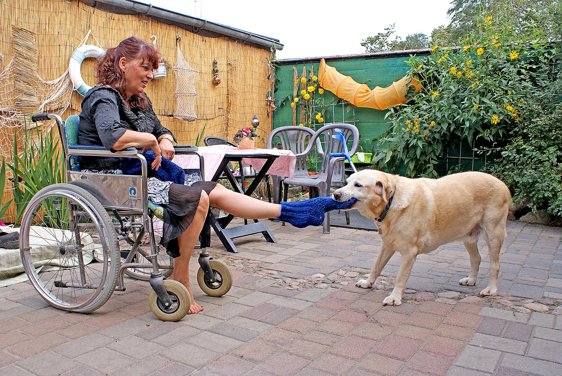 Karls hilft Hund Rollstuhlfahrerin