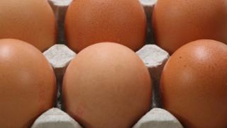 Strauss Eierhandel - Eier und Nudeln in Passau